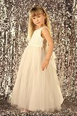 Elegance And Stylish Look. Elegance, Little Girl In Dress. poster