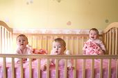 stock photo of triplets  - Little Baby Girls in crib together  - JPG