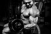 Brutal Strong Bodybuilder Athletic Muscular Men Pumping Up Muscles With Dumbbells poster