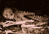 foto of exhumed  - Remains of a human skeleton underground - JPG