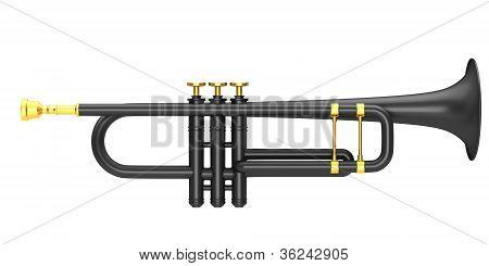 Black trumpet