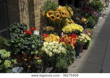 Florist Shop In Southwark. London. UK