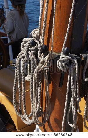 Sail Lines Belayed On Mast