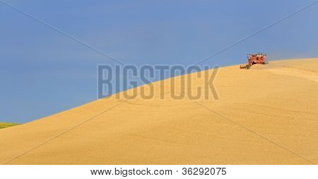 Harvesting Wheat in Palouse