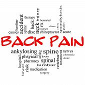 pic of lumbar spine  - Back Pain Word Cloud Concept in black and red letters with great terms such as injury lumbar spine treatment discs and more - JPG