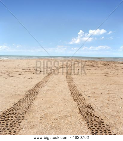Tiretracks In The Beach