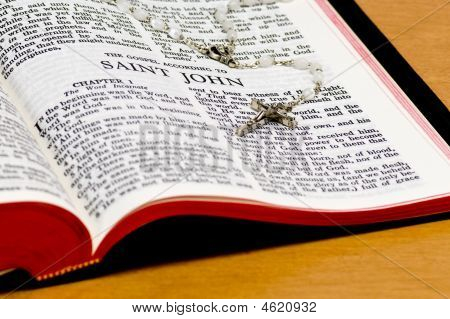 Rosary Bible Page - St John