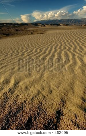 Flowing Dune Ripples