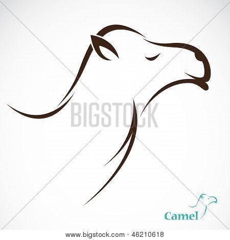 Imagem vetorial de um camelo