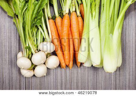 Turnip, Carrot And Celery