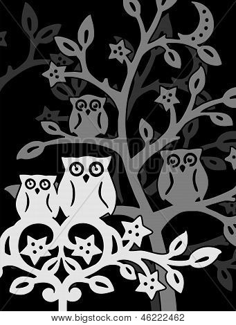 Owls at night