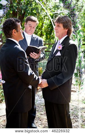 Handsome gay couple getting married outdoors in the park.