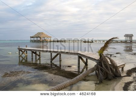Dead Palm And Pier At Sunset