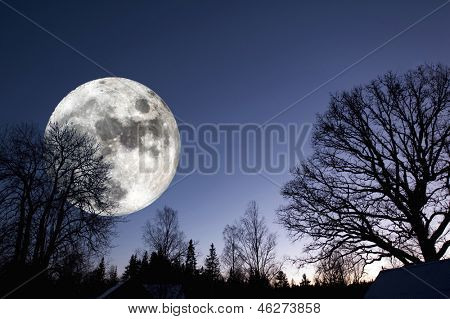 giant full-moon over a dark forest, night time image