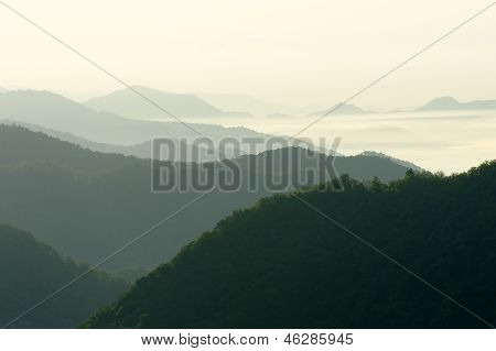 Green Forest And Mist On Mountains