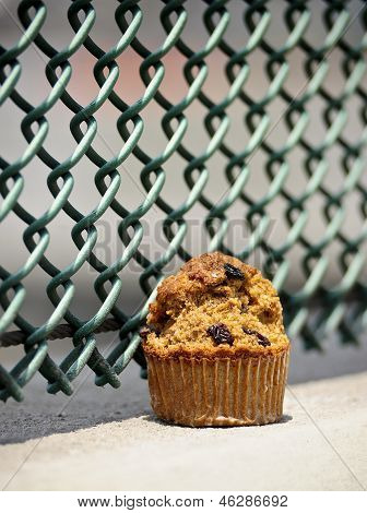 bran muffin with fence