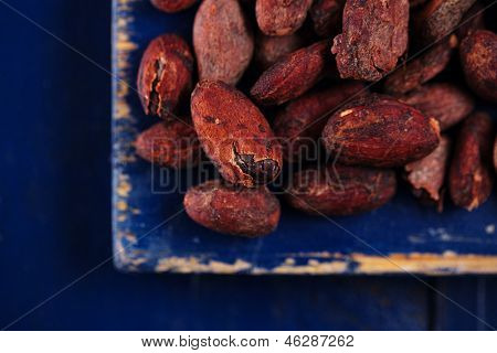 roasted cocoa chocolate beans on dark blue wood background