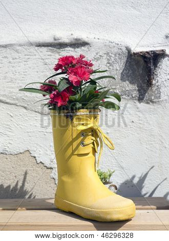 Welly Flowers