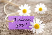 stock photo of friendship  - a purple label with Thank you on it and flowers in the background