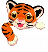 stock photo of tigers  - Vector illustration of Cute tiger cartoon with blank sign - JPG