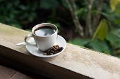 stock photo of defecate  - Cup of Kopi Luwak world - JPG