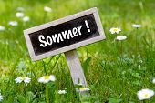 Sommer Signboard In The Meadow Angular