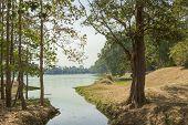 foto of lame  - Cambodia - JPG