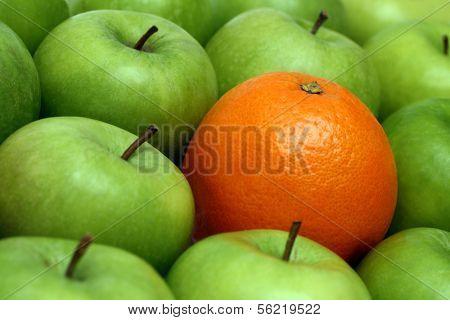 different concepts - orange between green apples