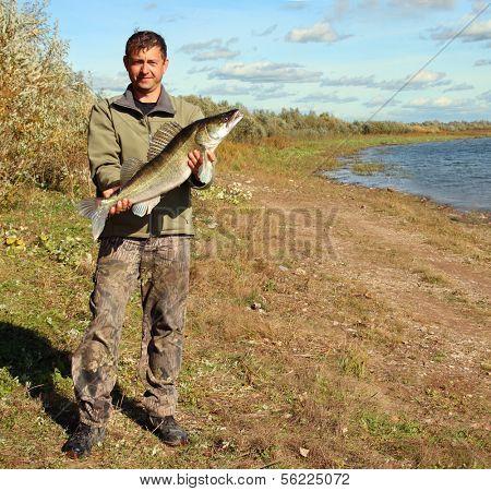 fishing man on coast with big zander fish