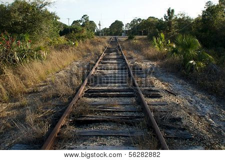 Railroad Tracks In Florida