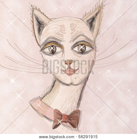 Muzzle Cat.