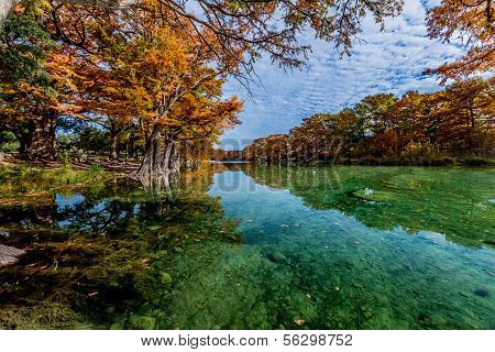 Crystal Clear Waters of the Frio River with Bright Fall Foliage at Garner State Park, Texas