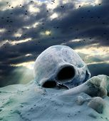 stock photo of cemetery  - Apocalypse after war abstract skull and birds - JPG
