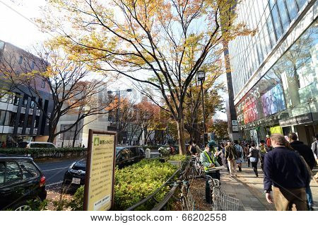 Tokyo - November 24: People On Omotesando Street On November 24. 2013