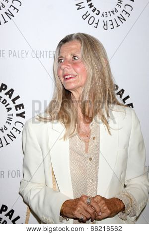 LOS ANGELES - JUN 4:  Jan Smithers at the Baby, If You've Ever Wondered: A WKRP in Cincinnati Reunion at Paley Center For Media on June 4, 2014 in Beverly Hills, CA
