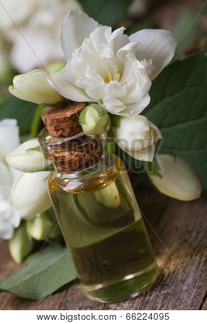 Vial Of Aromatic Essence And Jasmine Flowers