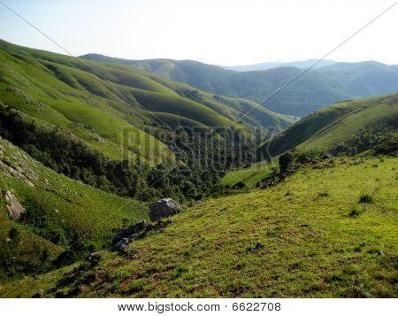 Green Grass Mountains