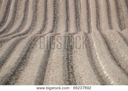 Furrows In Plowed Field