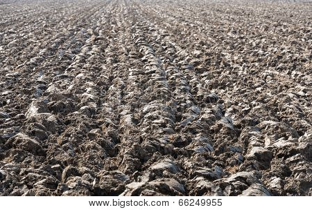 Recently Plowed Farmland
