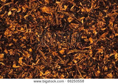 Background Is Of Chopped Tobacco Leaves