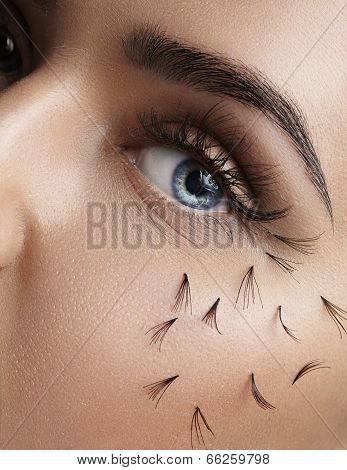 False lashes falling out