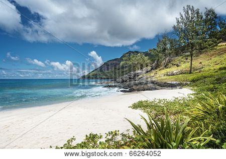 Tiny White-sand Beach In Seychelles