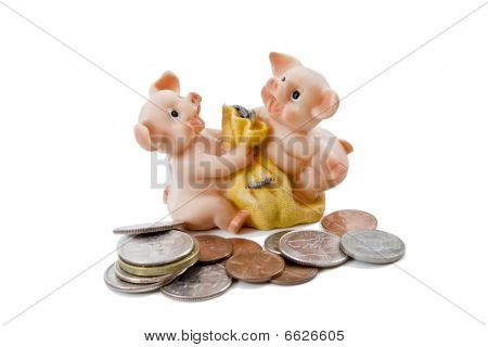 Pigs fighting over Money Bag