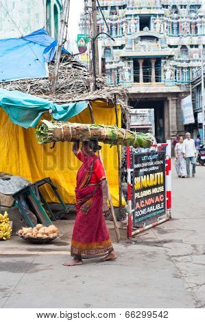 Indian Woman In Colorful Sari Carrying Hay Bale On Head At Crowded Street