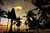 stock photo of tiki  - Tiki lanterns light the way on the beach at this resort in Wailea on Maui - JPG
