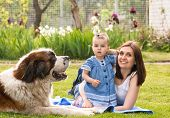 stock photo of puppies mother dog  - mother and child playing with dog on nature - JPG