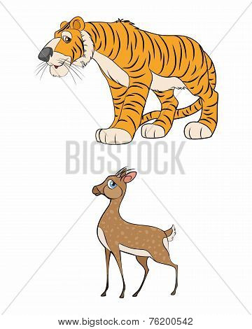 Gazelle And Tiger