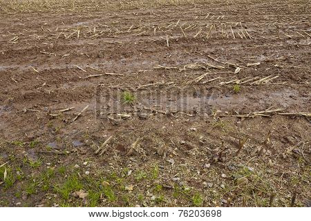 Agriculture - Harvested Field
