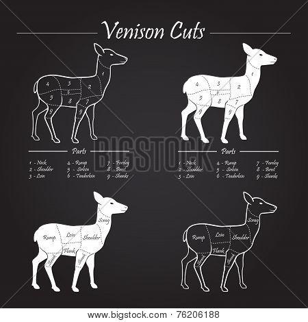 Venison Meat Cut Diagram Scheme