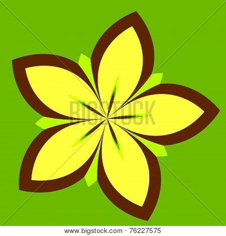 Abstract Floral Background - Yellow Concentric Daisy Flower Plant Isolated On Green Color - Petal Sh